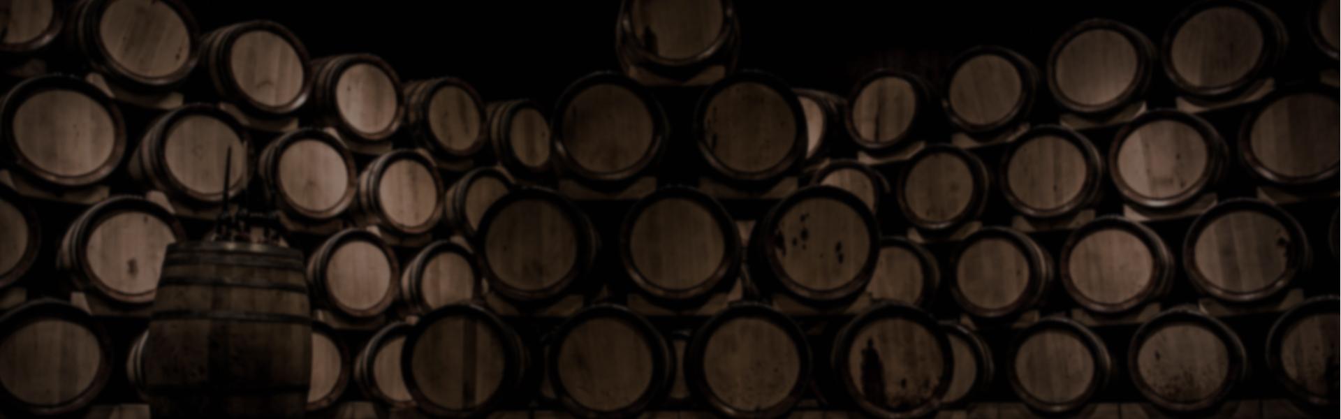 8Lgends - Nuestros vinos